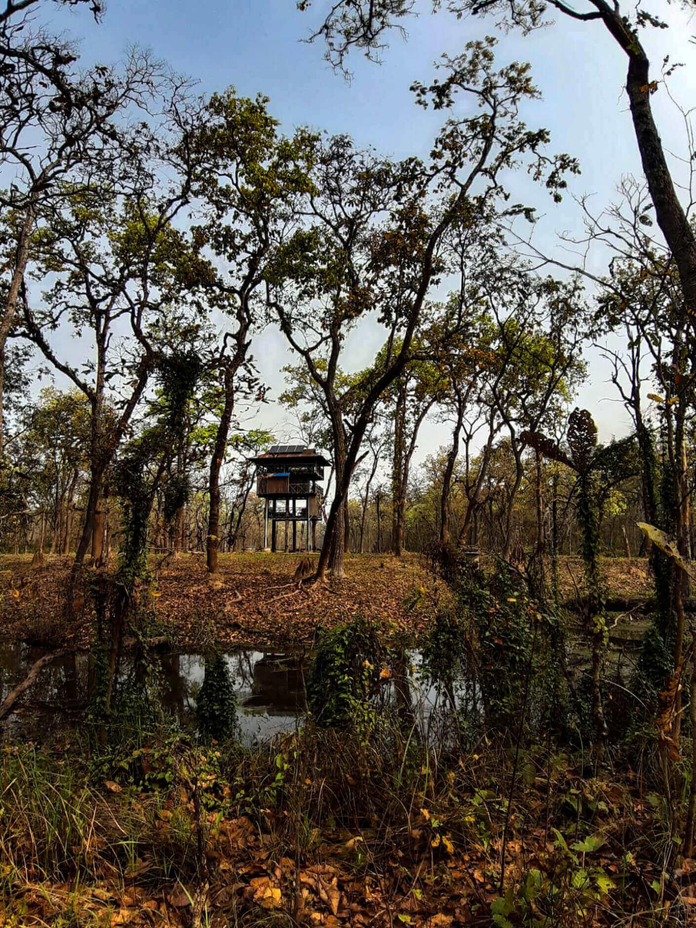 Observatory in jungle