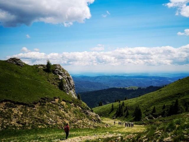 View over Bucegi National Park