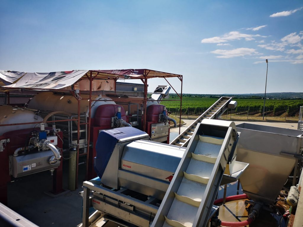 Equipment for transporting and sorting grains