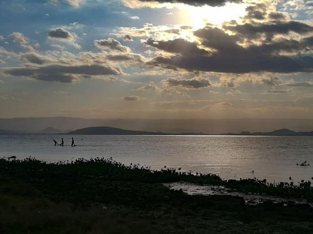 Landscape in Africa