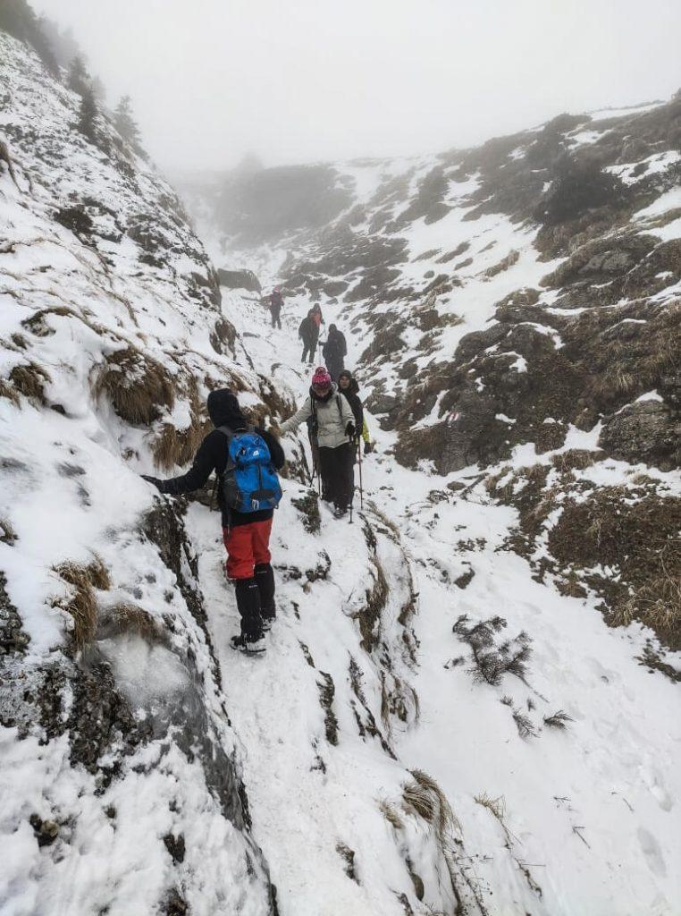 People trekking in winter