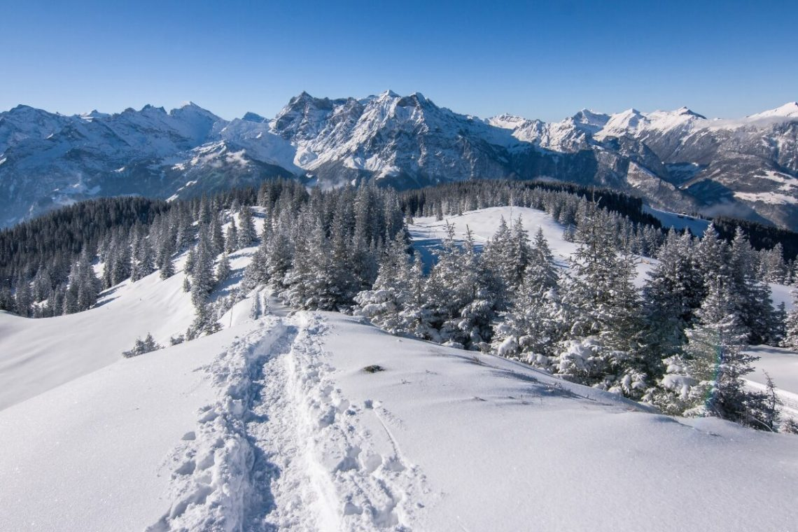 winter trail in the mountains