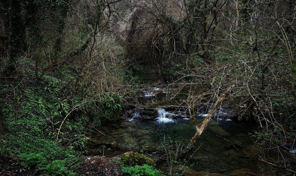 small waterfall in Krushuna waterfalls park