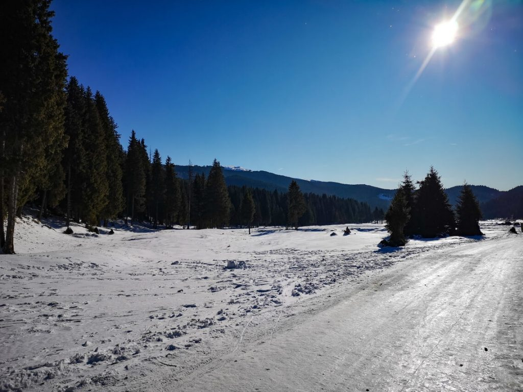 winter mountain road on a sunny day