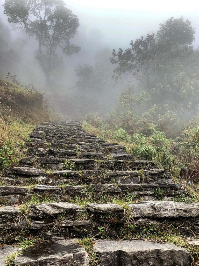 Trek to Australian Basecamp, Himalaya